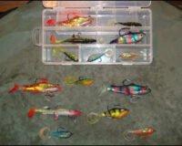 DreamTM Fiskesett med 7 gummifisk
