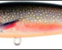Prey Target 17 Brook Trout 11cm 15g 423 0551.2423